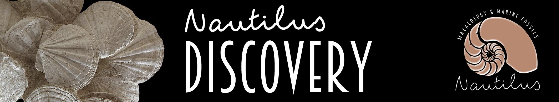 Nautilus Discovery